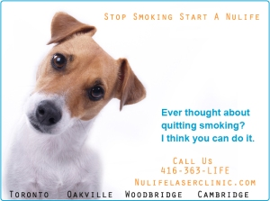 Stop Smoking laser Dog